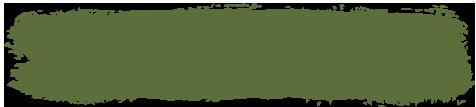 History in Practice green stroke decor